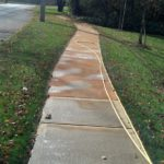 Path Way before Power wash
